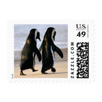 Penguin Stamps