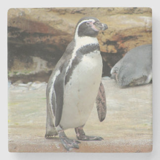 Penguin Standing Alone Stone Coaster