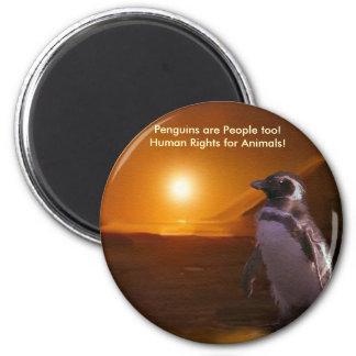 PENGUIN SUNSET FRIDGE MAGNET