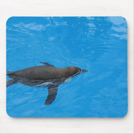 Penguin Swimming In The Pool Mouse Pad
