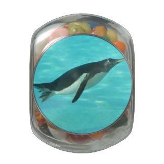 Penguin Swimming Underwater Glass Jars