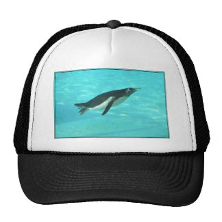 Penguin Swimming Underwater Trucker Hat