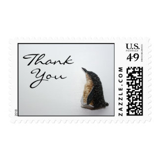 Penguin Thank You Stamps