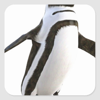 Penguin Walking Forward Square Sticker