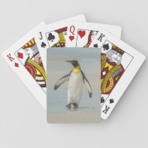 Penguin walking on the beach playing cards
