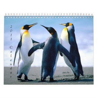 Penguins, 2011Calendar Calendar