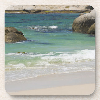 Penguins at Boulders Beach Simons Town South 2 Drink Coasters
