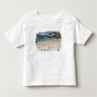 Penguins at Boulders Beach, Simons Town, South Toddler T-shirt