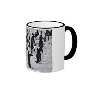 Penguins at Play Ringer Coffee Mug