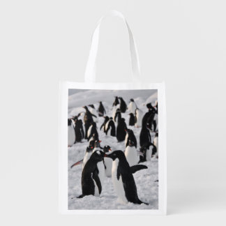 Penguins at Play Reusable Grocery Bag