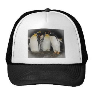 Penguins at the Zoo Mesh Hat