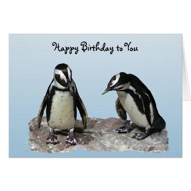 Penguins Birthday