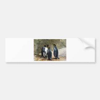 Penguins Bumper Sticker