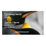 Penguins Business Card