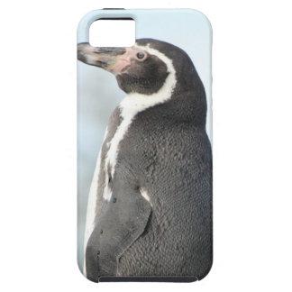 Penguins iPhone 5 Case