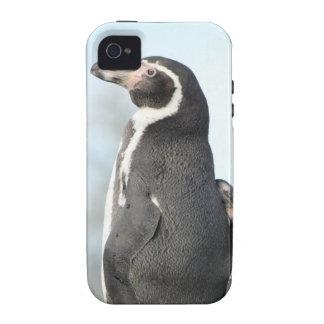 Penguins Case-Mate iPhone 4 Case