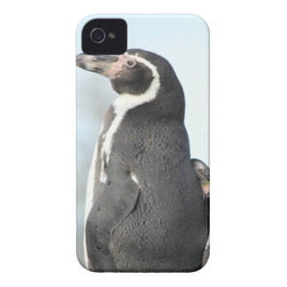 Penguins iPhone 4 Case-Mate Case