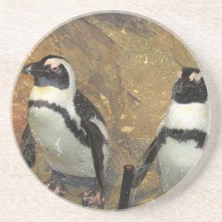 Penguins Coaster