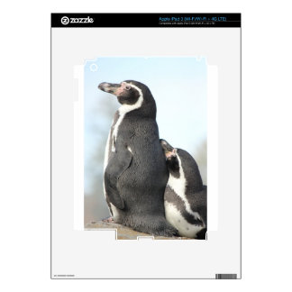 Penguins Decals For iPad 3