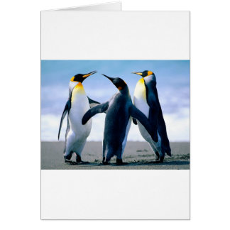 Penguins from Alaska Card