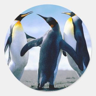 Penguins from Alaska Round Sticker