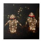 Penguins Holiday Light Display Tile