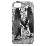 Penguins in Love iPhone 5 Cases