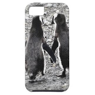 Penguins in Love iPhone SE/5/5s Case