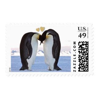 Penguins in Love Medium Stamp Sheet