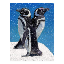 Penguins in Winter & Snow Postcard