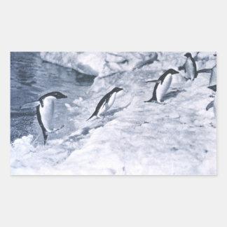 Penguins Jumping onto Land. Rectangular Sticker