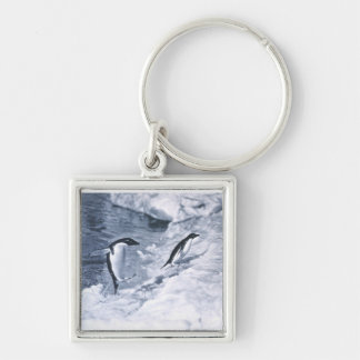 Penguins Jumping onto Land. Silver-Colored Square Keychain