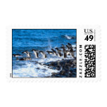 Penguins Leaping Postage Stamps