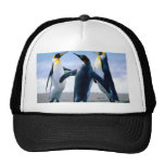 Penguins Mesh Hat