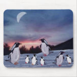 Penguins on Ice Mousepad