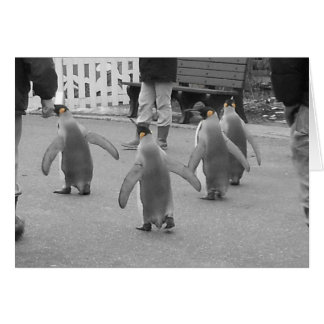 Penguins on Parade Stationery Note Card