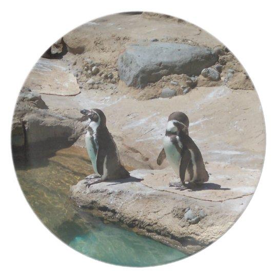 Penguins Plate