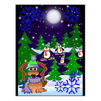 Penguins Postcards