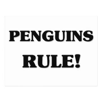Penguins Rule Postcard