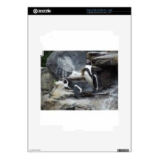Penguins Skin For iPad 2