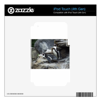 Penguins Skins For iPod Touch 4G