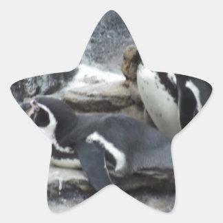 Penguins Star Sticker