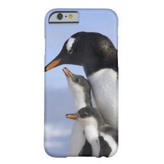 Península antártica, puerto de Neko, Gentoo Funda De iPhone 6 Barely There