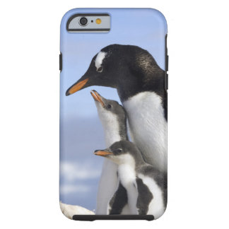 Península antártica, puerto de Neko, Gentoo Funda De iPhone 6 Tough