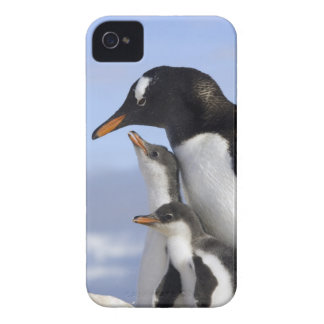 Península antártica, puerto de Neko, Gentoo Case-Mate iPhone 4 Protector