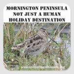 Península de Mornington del pegatina no apenas un