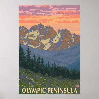 Península olímpica, flores de WashingtonSpring Póster