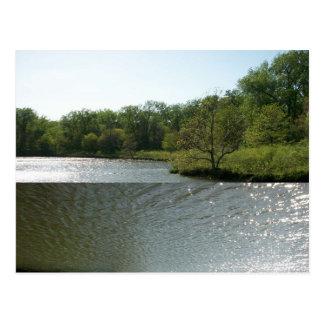 Penique del lago postales