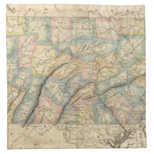 Pennsylvania 8 servilleta imprimida