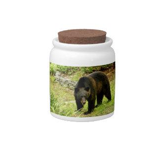Pennsylvania Black Bear Candy Jars
